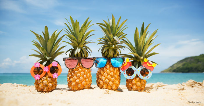 Ask The Lawyer: What are the legal dos and don'ts for the summer?